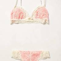 Eberjey Laced Coral Set