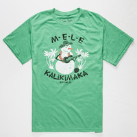 Rip Curl Frosty Heather Mens T-Shirt Green  In Sizes