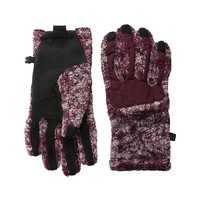 Women's The North Face Denali Thermal Etip Glove