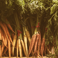 Kitchen Still Life: Carrots, Food Photography, Ingredients, Foodie Gift, Sepia Kitchen Art, Canvas or Photo Print, Produce, Vegetables