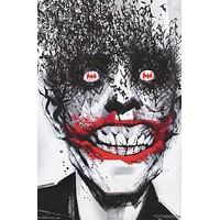 Batman Joker Bats DC Comics Art Poster 22x34