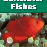 The 101 Best Saltwater Fishes: Adventurous Aquarist Guide Book