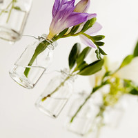 Hanging Bottle Garden | Urban Outfitters