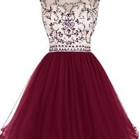 Short Beading Prom Dress Tulle Homecoming Dress Hollow Back