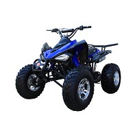 New 175CC Fully Automatic Coolster ATV-3175S Full Sized ATV