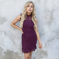 Desire Lace Dress In Plum