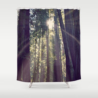 Redwoods Hike Shower Curtain by Backwoods Stories