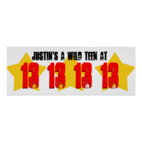 WILD 13 Year Teen Birthday Party Banner Stars V1D Poster