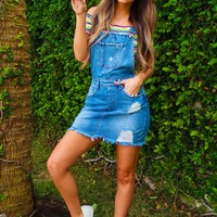 Here For The Party Overalls: Denim