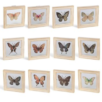 Asst Butterfly Wall Art S/12