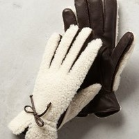 Tauplitz Shearling Gloves by Anthropologie Brown