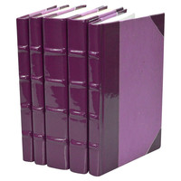 Patent-Leather Books, Plum, Set of 5, Other Books & Book Accessories