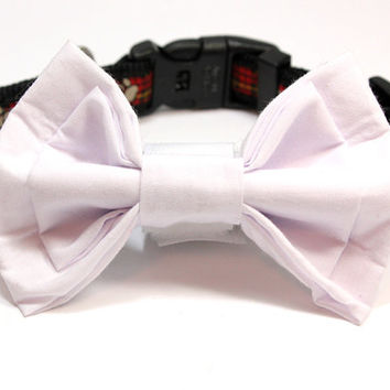 Medium Size White Dog Bowtie. Double Layer White Cotton Bow Tie for Dogs.  Great for Small to Medium Size Dogs. Shih Tzu Maltese Jack Russel