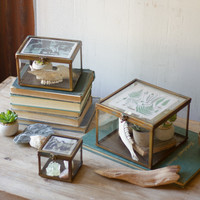 Set of 3 Glass Photo Boxes with Antique Brass Detail