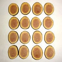 Wood slices, wooden discs, natural wood pyrography supplies. Jewelry supplies,jewelry findings,wooden centerpieces.Wood burning craft blanks