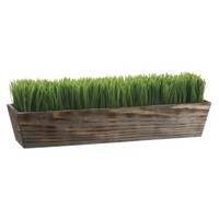 """Grass in Wood Planter - 8""""H x6.5""""D x24.25""""W"""