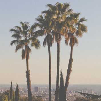 L.A. Stretched Canvas by Man & Camera
