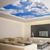 Ceiling STICKER MURAL sky clouds cupola dome /