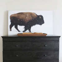 """50"""" x 28"""" - Vintage Photography, Large Print of Yellowstone Bison"""