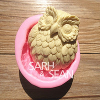 3D M0334 Owl fondant cake molds soap chocolate mould for the kitchen baking