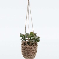Hanging Cream Woven Planter - Urban Outfitters