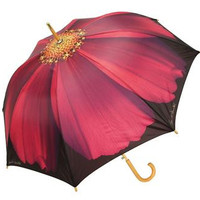 Purple Cosmo Cane Umbrella Auto Open