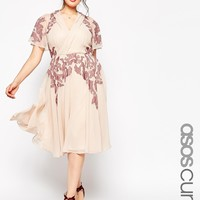 ASOS CURVE Lace Placed Embroidered Midi Skater Dress