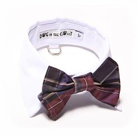 White Shirt Collar + Purple Plaid Bow Tie